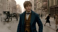 Fall Movie Roundup | Fantastic Beasts, Doctor Strange and Arrival