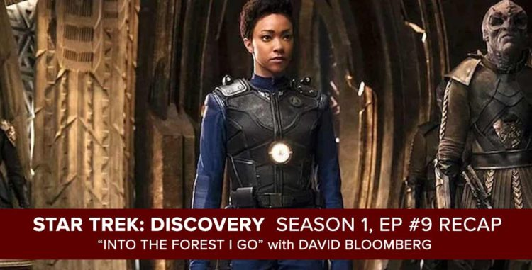 "Star Trek Discovery | Season 1, Episode 9 Recap of ""Into the Forest I Go"""